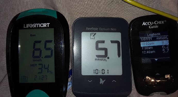 Dodgy Blood Glucose Meters